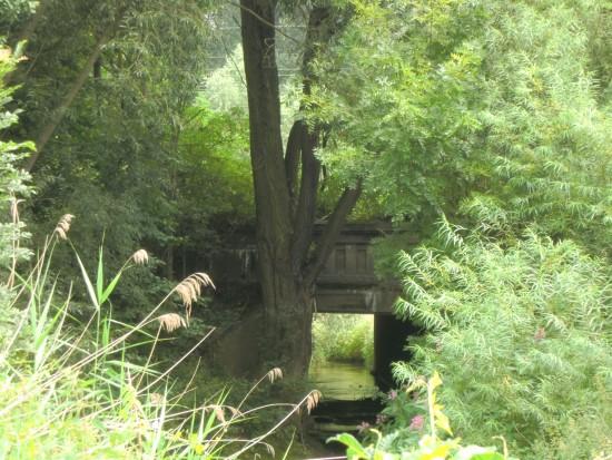 westliche Unterführung unter die Bahn Richtung Schiefer Berg