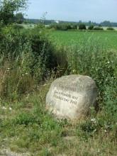 Gedenkstein Königsstuhl Elze Eime