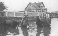 Elze Saaledamm Ecke Sehlder Straße In der Pferdeschwemme, Landwirt Mundt