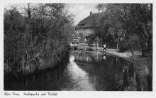Untermühle Elze 1950