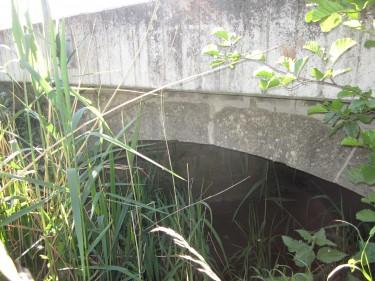 Elze Asbost Brücke Südseite