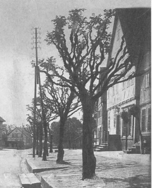 Ansichtskarte 1900 Beischlagwange Elze